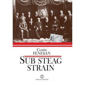 Sub steag strain. Comunistii si Partidul comunist din Romania in arhiva Kominternului (1919-1924)