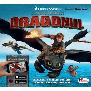 Cum sa iti dresezi Dragonul !